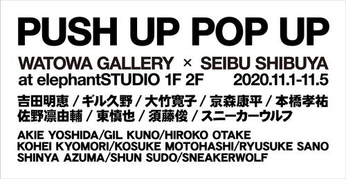 pushup_popup_ol_001.jpg